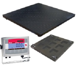 FW Range Painted Mild Steel Platform and Ohaus T32XW Stainless Steel Indicator